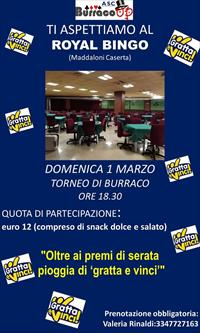 TORNEO AL ROYAL BINGO
